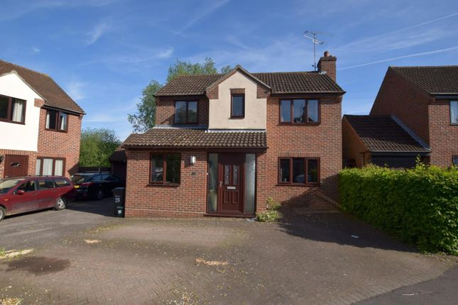 Thumbnail Detached house for sale in Bluebell Close, Witham