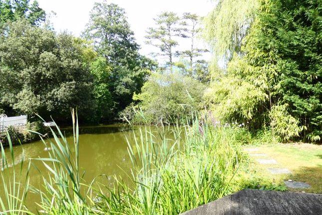 Photo 7 of Pine Walk, East Horsley, Leatherhead KT24