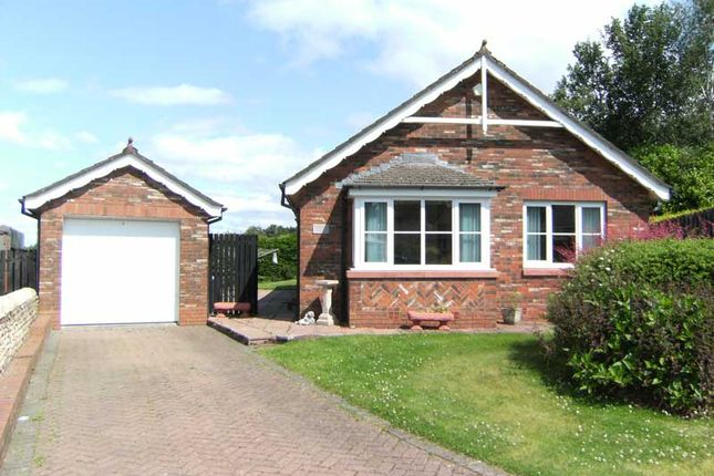 Thumbnail Bungalow for sale in Mountainhall Place, Dumfries