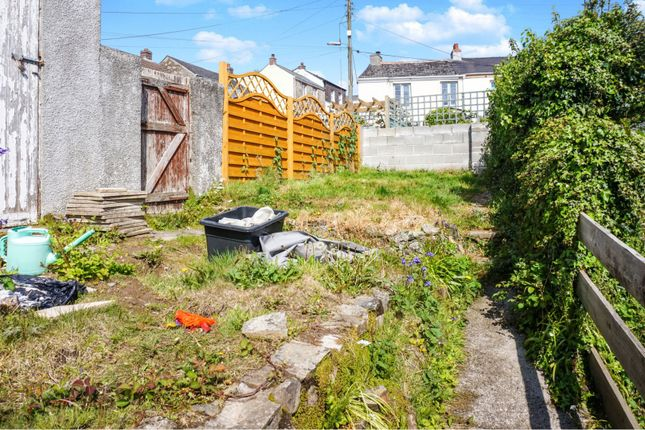 Rear Garden of Chapel Terrace, Par PL24