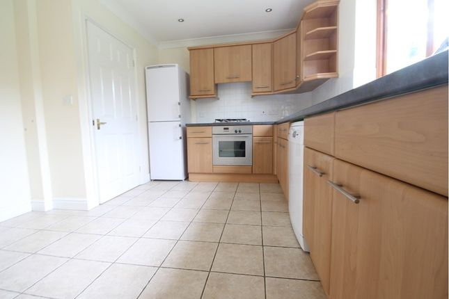 Thumbnail Detached house to rent in White Acres Drive, Holyport, Maidenhead