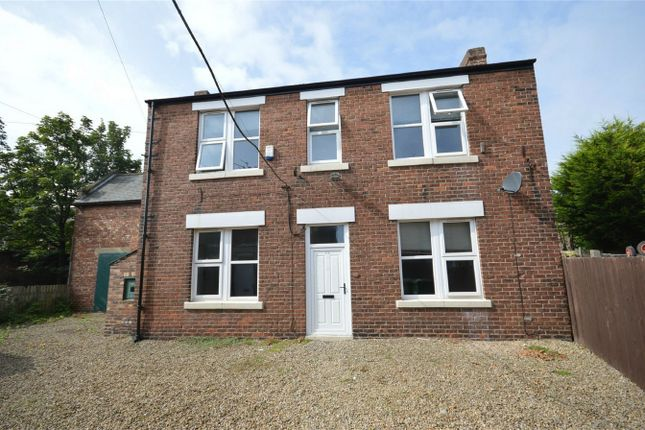 Thumbnail Detached house to rent in Westbourne Road, Nr City Campus, Sunderland, Tyne And Wear