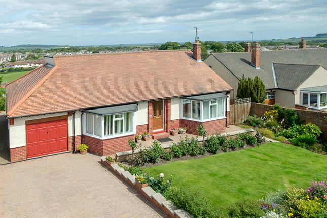 Thumbnail Detached bungalow for sale in 37 Blakelaw Road, Alnwick, Northumberland