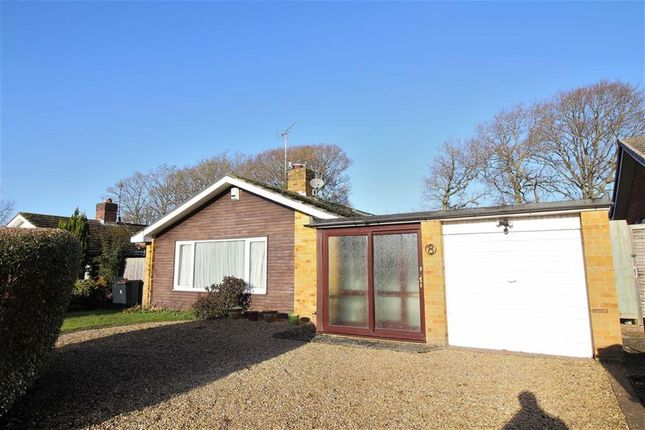 Thumbnail Detached bungalow to rent in Pinewood Road, Highcliffe, Christchurch