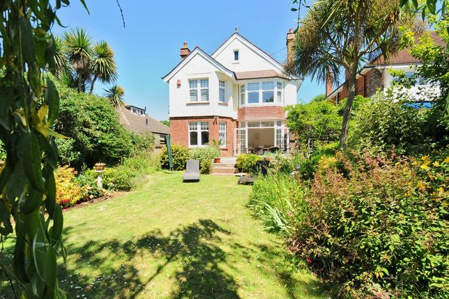 Thumbnail Detached house to rent in New Church Road, Hove