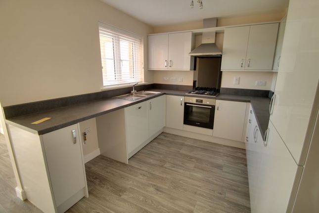 Thumbnail Semi-detached house for sale in The Windsor @ Abbey Park, Thorney, Peterborough