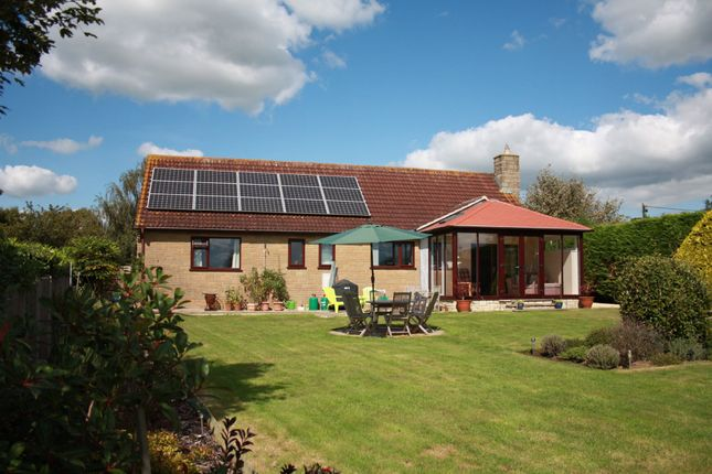 Thumbnail Detached bungalow for sale in Ham Lane, Marnhull, Sturminster Newton