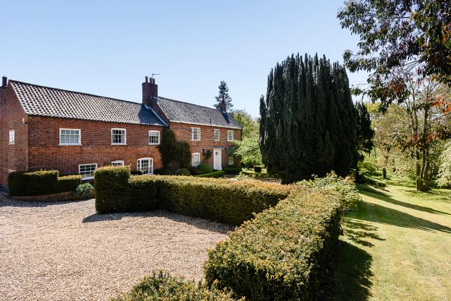 Thumbnail Detached house for sale in Church Road, Hassingham, Norwich
