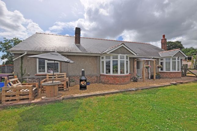 Thumbnail Detached bungalow for sale in Large Family House, Allt-Yr-Yn Way, Newport