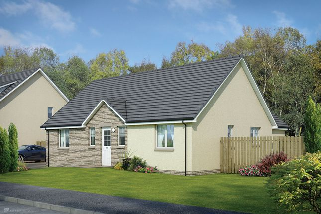 Thumbnail Detached bungalow for sale in The Cruachan Off Oakley Road, Saline, Dunfermline, Fife