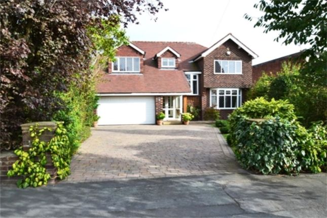 Thumbnail Detached house to rent in Chester Road, Hazel Grove, Stockport
