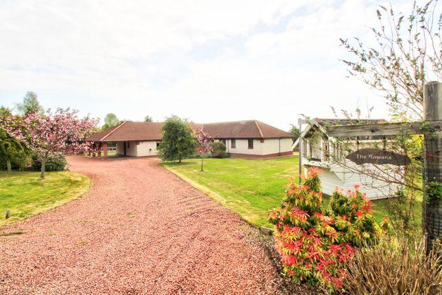 Thumbnail Detached bungalow for sale in Invergordon
