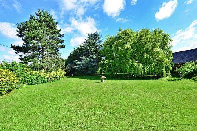 Thumbnail Detached house for sale in Lower Twydall Lane, Rainham, Gillingham, Kent