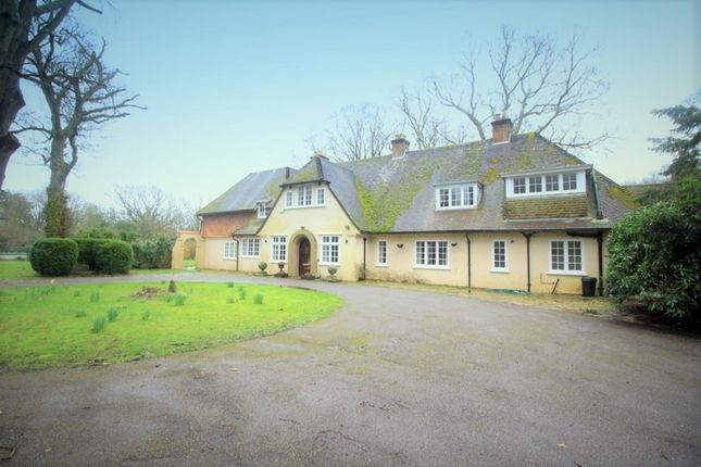 Thumbnail Detached house to rent in Holmsley Road, New Milton