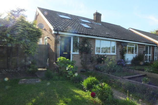 Thumbnail Semi-detached bungalow to rent in Nevill Road, Uckfield