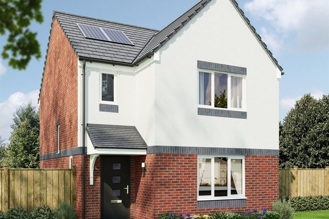 """3 bed detached house for sale in """"The Elgin"""" at Gillburn Road, Dundee DD3"""