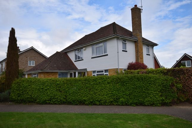 Thumbnail Detached house for sale in Frant Avenue, Bexhill-On-Sea