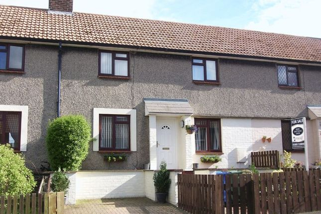 Thumbnail Terraced house to rent in Cheviot Road, Shilbottle, Alnwick