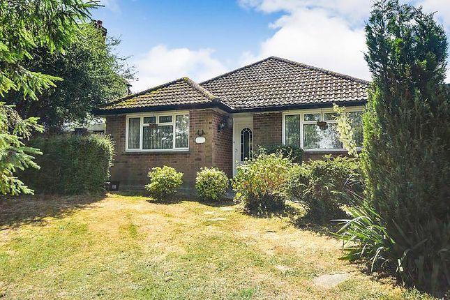 Thumbnail Detached bungalow for sale in The Ridge, Hastings
