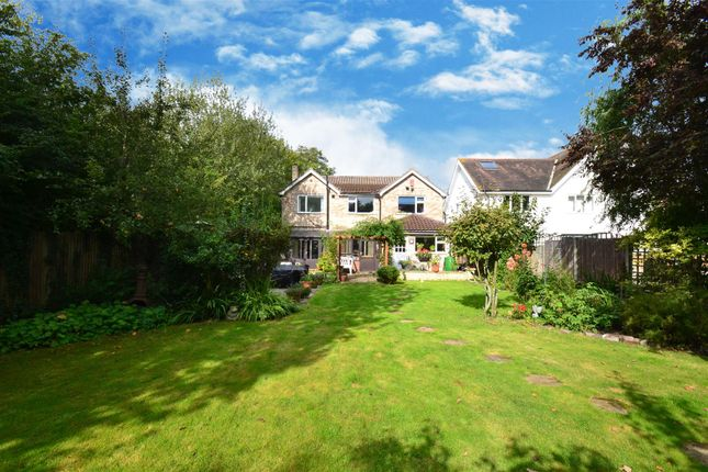Thumbnail Detached house for sale in Limes Avenue, Horley