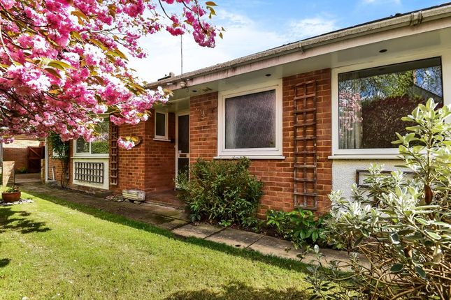 Thumbnail Detached bungalow for sale in Westfield, Woking