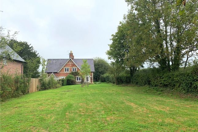 Thumbnail Semi-detached house to rent in The Street, Motcombe, Shaftesbury