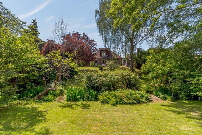 Back Of Property of Riverside Drive, Bramley, Guildford GU5