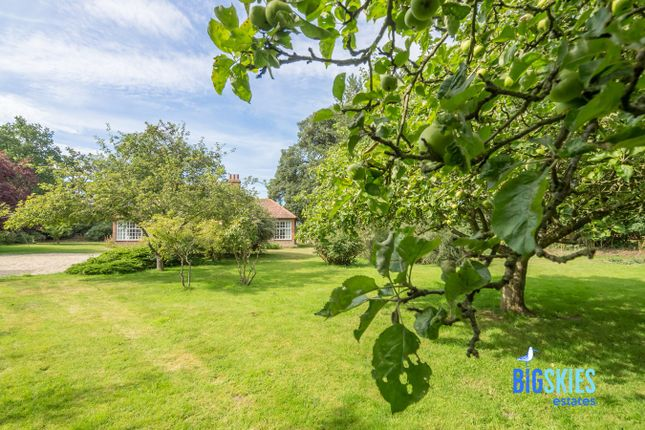 Garden of Wells Road, Warham NR23