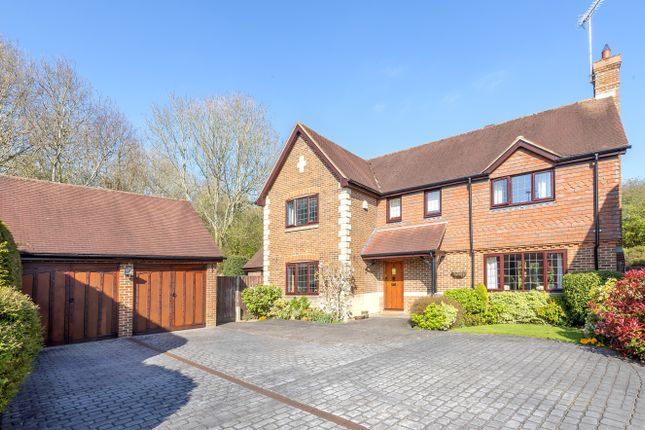 Thumbnail Detached house for sale in The Castle, Horsham