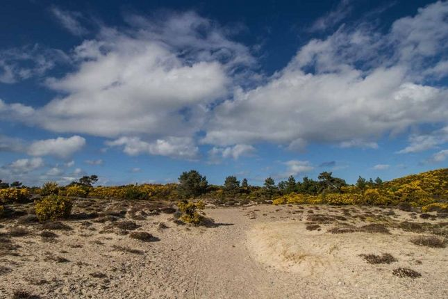 Thumbnail Land for sale in North Whins, The Park, Findhorn