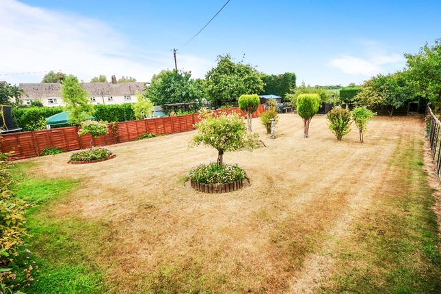Thumbnail Semi-detached bungalow for sale in Syers Field, Blackmore End, Braintree