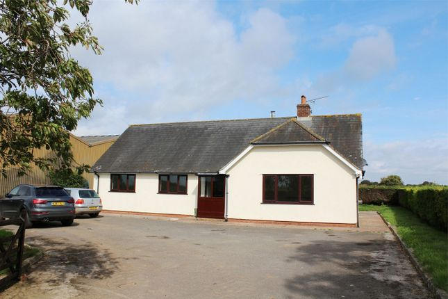 Thumbnail Detached bungalow to rent in Triangle Farm, Churchstanton, Taunton