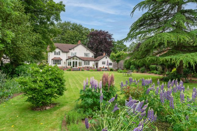 Thumbnail Detached house for sale in North Road, South Kilworth, Lutterworth