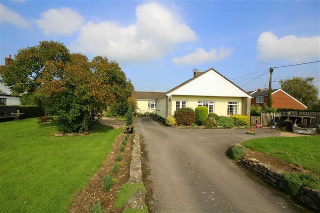 Thumbnail Detached bungalow for sale in New Zealand, Calne