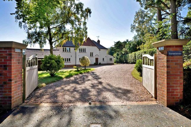 Thumbnail Detached house for sale in Hawkins Lane, West Hill, Ottery St. Mary