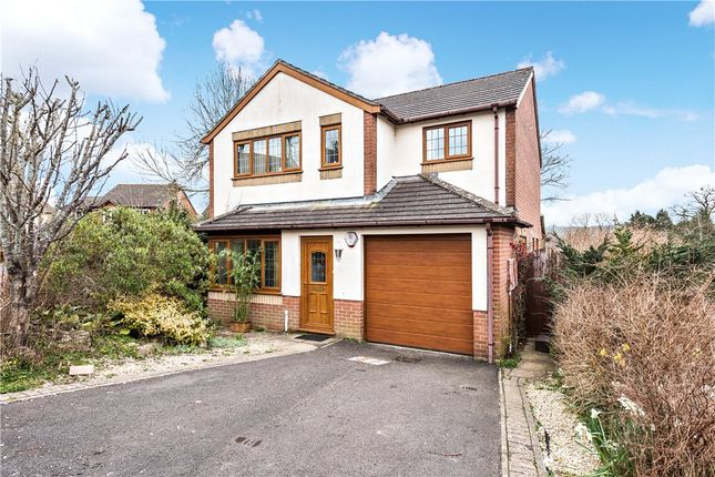 Thumbnail Detached house for sale in The Beeches, Beaminster, Dorset