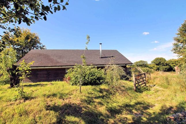 Thumbnail Lodge for sale in Exbourne, Okehampton
