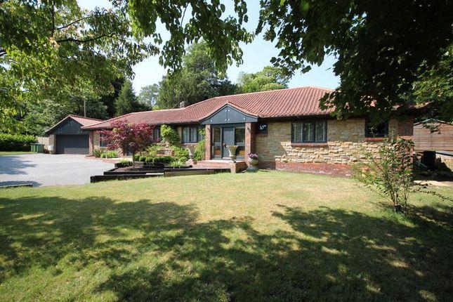 Thumbnail Detached bungalow for sale in Threals Lane, West Chiltington, Pulborough