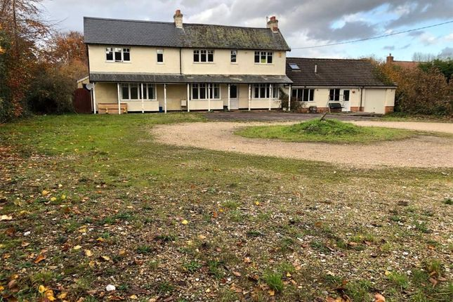 Thumbnail Property for sale in Waterleat, Newton Poppleford, Sidmouth, Devon
