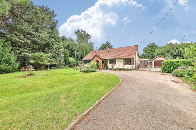 Thumbnail Bungalow for sale in East End, Gooderstone, King's Lynn