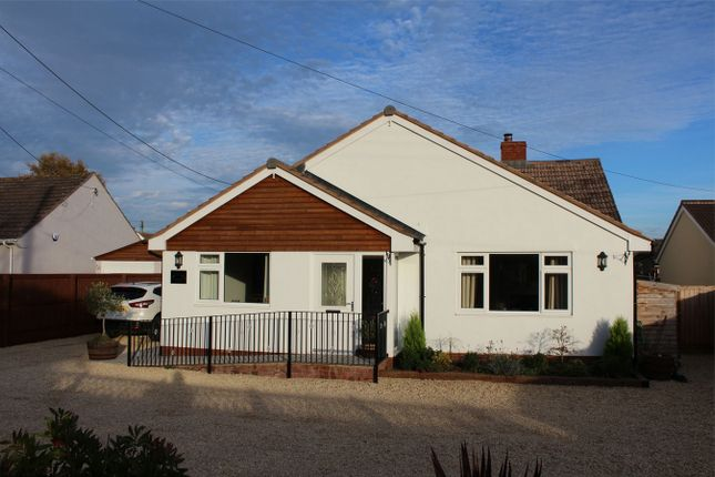 Thumbnail Detached bungalow for sale in Creech Heathfield, Taunton