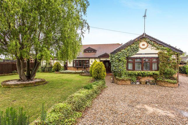 Thumbnail Detached house for sale in Elm Road, Pitsea, Basildon