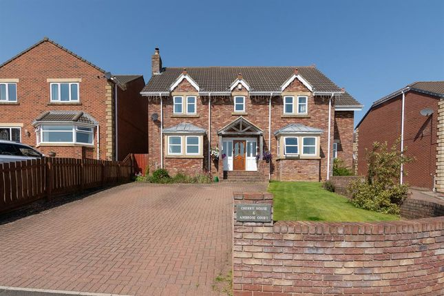 Thumbnail Detached house for sale in Ambrose Court, Stanley