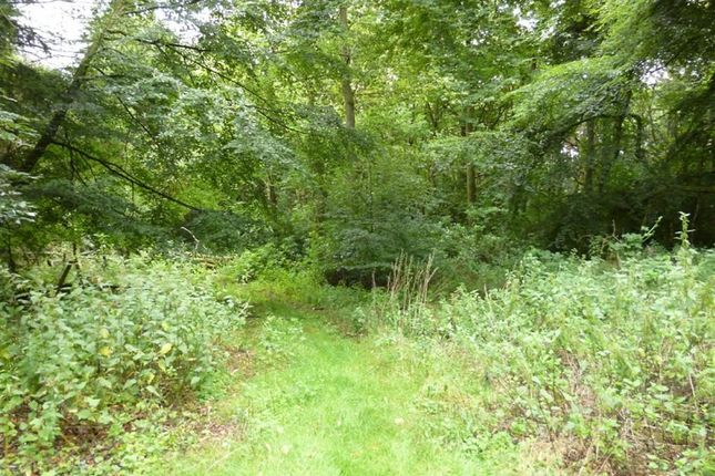 Land for sale in Uddens Drive, Wimborne, Dorset