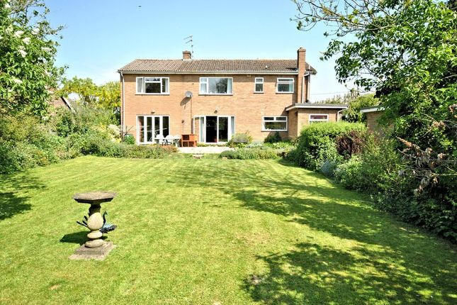 Thumbnail Detached house for sale in Lynn Road, Hillington, King's Lynn