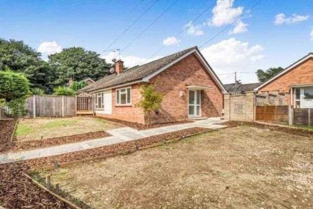 Thumbnail Bungalow to rent in Horstead, Norwich