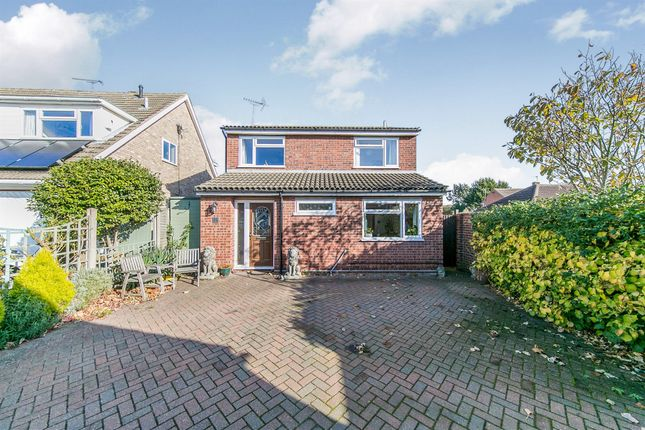 Thumbnail Detached house for sale in Holm Oak, Colchester