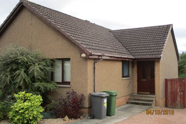 Thumbnail Bungalow to rent in Portpatrick Terrace, Monifieth, Dundee