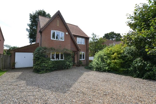 Thumbnail Property for sale in 12A The Street, South Walsham, Norwich, Norfolk.