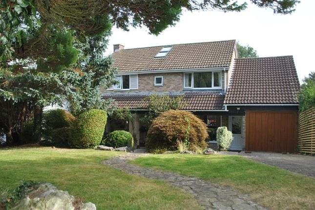 Thumbnail Detached house for sale in Rippleside Road, Clevedon